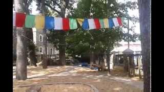Natural Playground at Myers Park UMC in Charlotte NC Video 1